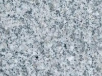 talia grey